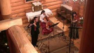 Sailing (Rod Stewart, G. Sutherland) on viola, cello and flute (Trio Animando)