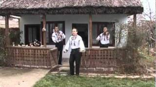 Fraţii Reuţ - Doarme Leana şi suspină 2010
