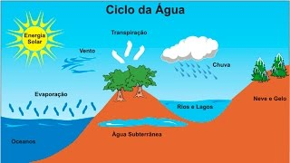 Curso Meio Ambiente - Ciclos da Natureza - Cursos CPT