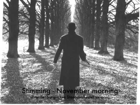 stimming-november-morning-brandenburgisches-staatsorchester-version-pano-manara
