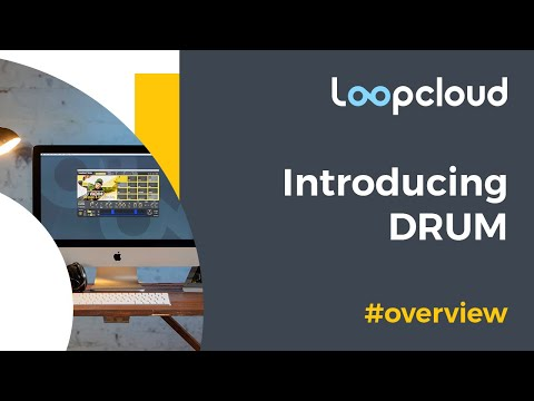 Loopcloud DRUM - Unforgettable beats programmed in seconds.