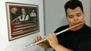 Lembrando Chopin (Waldir Azevedo e Hamilton Costa) SERGIO MORAIS flauta
