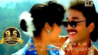 Thazhampoo selai mama un mela-Super Hit Tamil Love Duet H D Video Song