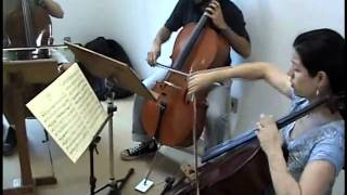 Trio em C maior - Beethoven