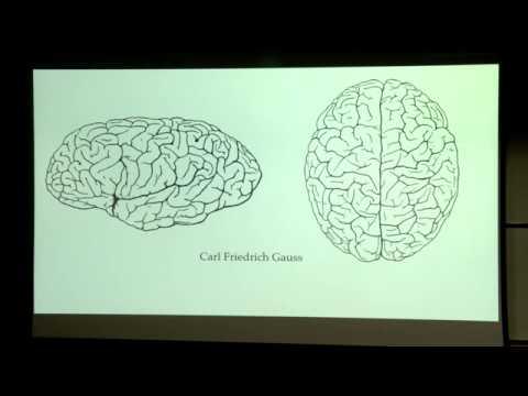Can Mathematics Understand the Brain? - Prof. Alain Goriely, Oxford