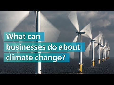 What can businesses do about climate change?