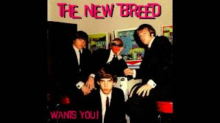 The New Breed - Oh, Pretty Woman (Roy Orbison Cover)