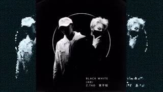 ZTAO - Black White (AB) [3D Audio]