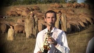 Gabi Nicolae - Merg ciobanii sus la munte