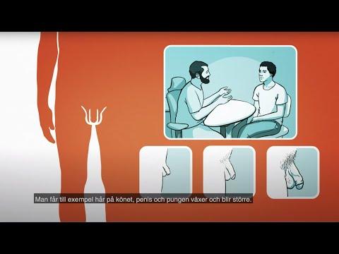 RFSU informerar om mannens kön på arabiska   العضو الجنسي للرجل
