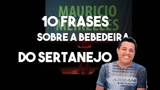 10 FRASES SOBRE A BEBEDEIRA DE BRUNO (dupla Bruno e Marrone) - Maurício Meirelles