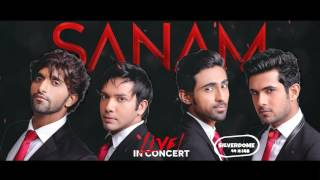 Tv Promo 2 • SANAM Live In Concert • SILVERDOME NETHERLANDS • Royaldutch