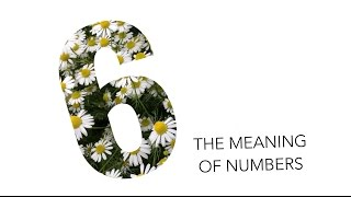 The Meaning of Numbers: 6 / Numerology | Andrea's Number