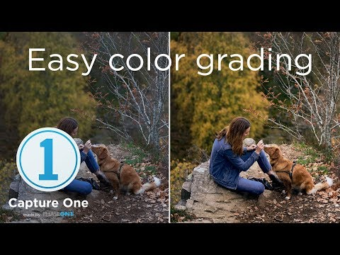 Easy Color Grading | Tutorial | Capture One 12