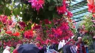 Kwiaty moja miłość.:) muzyka Andre Rieu