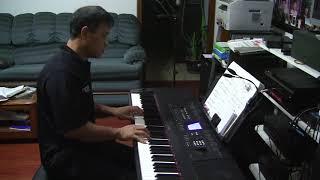血染的风采 电子琴演奏  by 光榮