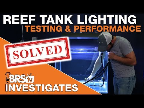 BRStv Investigates: EVERYTHING we know about reef tank lighting!