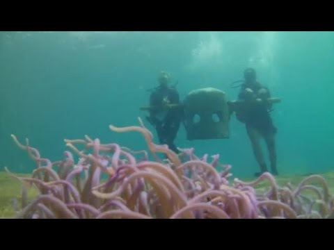 Philippines Marine Conservation and Diving - Building artificial reef