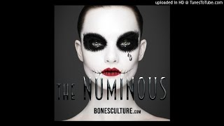 "the NUMINOUS ft 66notes ""TO: Her"" (audio)"
