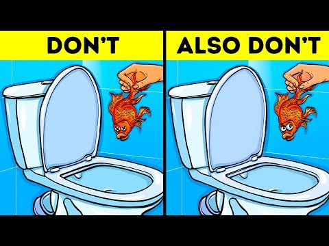 12 Things You Should Never Flush Down the Toilet