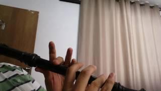 O Dólar Furado - Flauta Doce Contralto Barroco