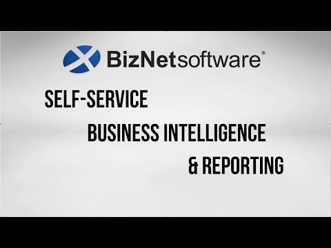 BizNet Software: Self-service BI & Reporting
