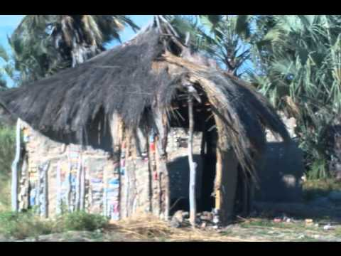 SW Africa 2011