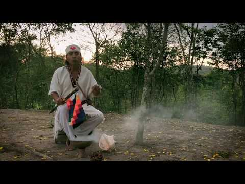 Mensaje del INTIRAYMI para una Tierra del Amor – MUNAYSUYU – Ñaupany Puma