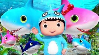 Baby Shark | + More Nursery Rhymes & Kids Songs | Little Baby Bum | Educational Songs for Toddlers