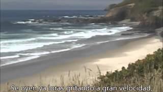Días de amar/Dúo Guardabarranco-Vídeo para la Paz