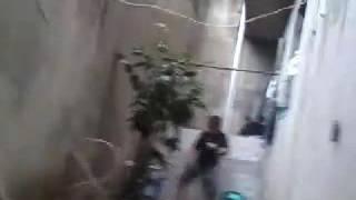 Vídeo prodígio do Dudu