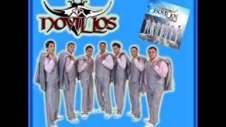 Novillos Musical-Noviembre Sin Ti