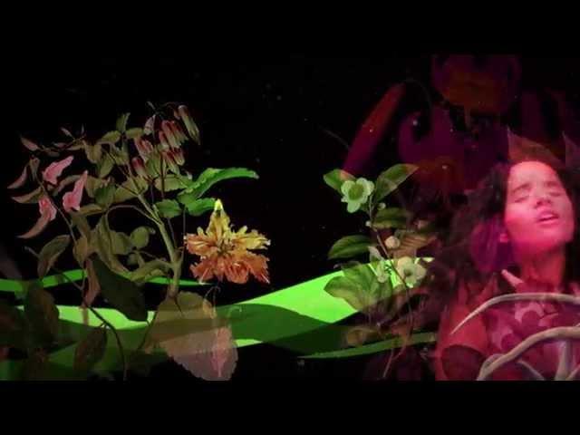 Chancha Via Circuito - Jardines ft. Lido Pimienta vídeo oficial