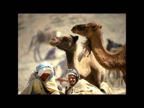 Morocco Undiscovered Private Tours | EVJF & EVG | Bachelor Party Morocco – Private Tours