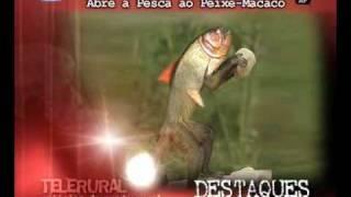 """Telerural - Destaques- """"Abre Pesca ao Peixe-Macacaco"""""""