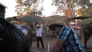 banda la consentida de mazatlan - naci cansado video oficial
