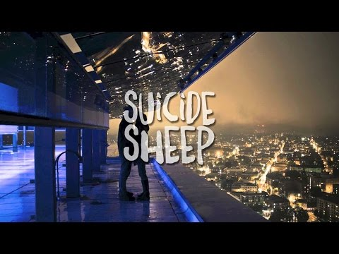 vancouver-sleep-clinic-stakes-mrsuicidesheep