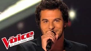 The Voice 2014│Amir Haddad - Candle in the Wind (Elton John)│Blind audition