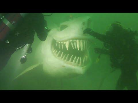 Морские Монстры, Которые Опаснее Мегалодона