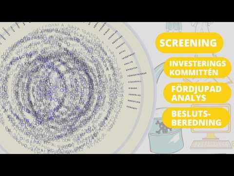 Swedfund investeringsprocess