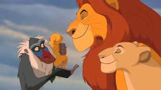 O Rei Leão - Ciclo Da Vida