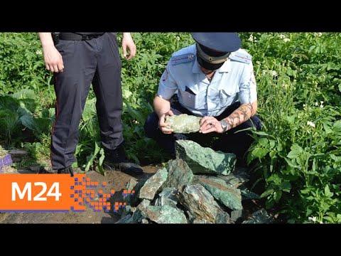 Полицейские обнаружили 200 кг нефрита, который зимой украли у судебных приставов - Москва 24
