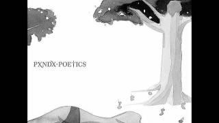 """PANDA """"Agradable locura temporal"""" (letra)"""