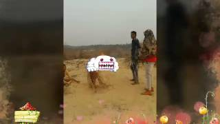 Dhadkan 2  2017 video