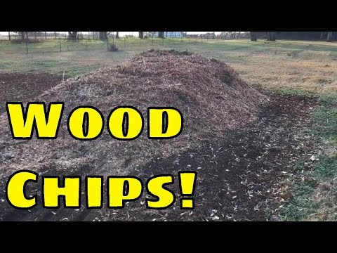 ✔️SPREADING WOOD CHIPS IN MY BACK TO EDEN GARDEN 🌱 I CAN'T BELIEVE THIS HAPPENED🔴