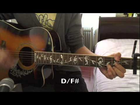 Taylor Swift Enchanted Beginner Guitar Cover Chords Chords