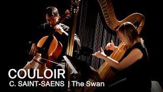 Camille Saint-Saëns: The Swan | Couloir