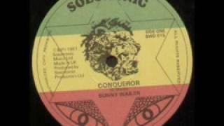 Bunny Wailer - Conqueror  Roots reggae Dubwise Selecta