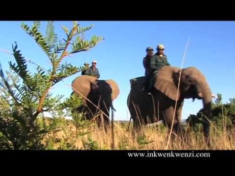 Inkwenkwezi Game Reserve
