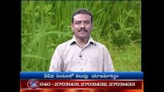 Raithu Nestam phl by DD Saptagiri part-3 9-8-13